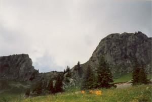 Film66_Photo13